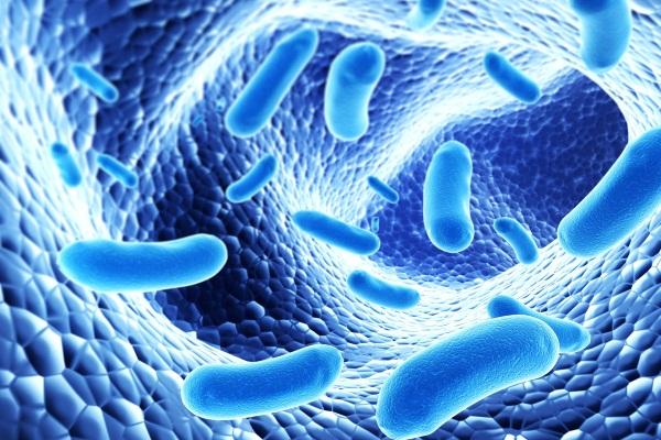 Men vi sinh và men tiêu hóa có thể dùng chung?