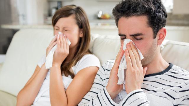 Phòng bệnh do virus cúm